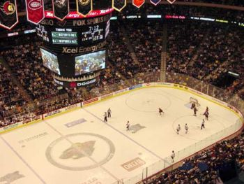 section206_xcel_energy_center_wild